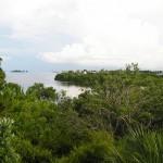 View of St. Joseph Sound