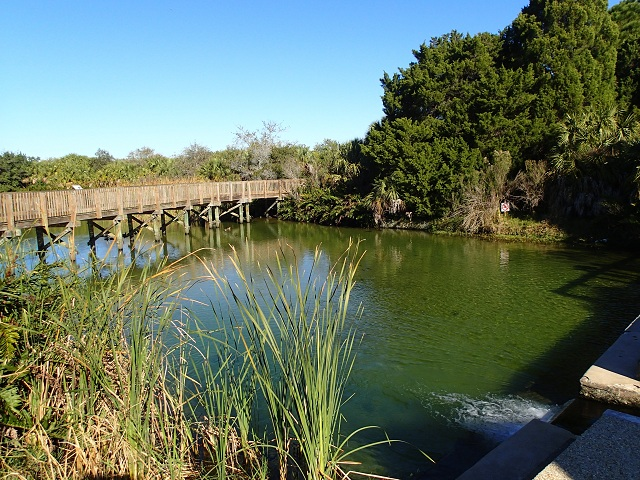 Wall Springs Park Boardwalk