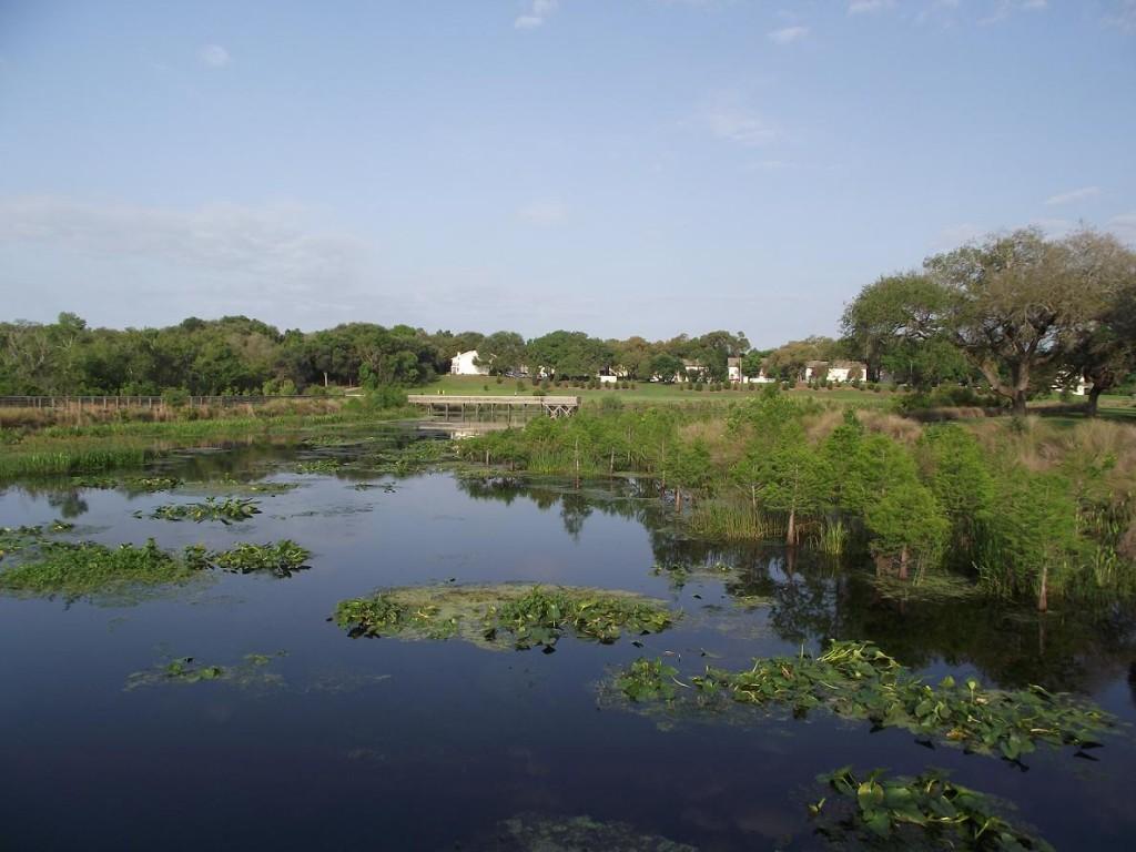Kapok Park Extension - Looking West