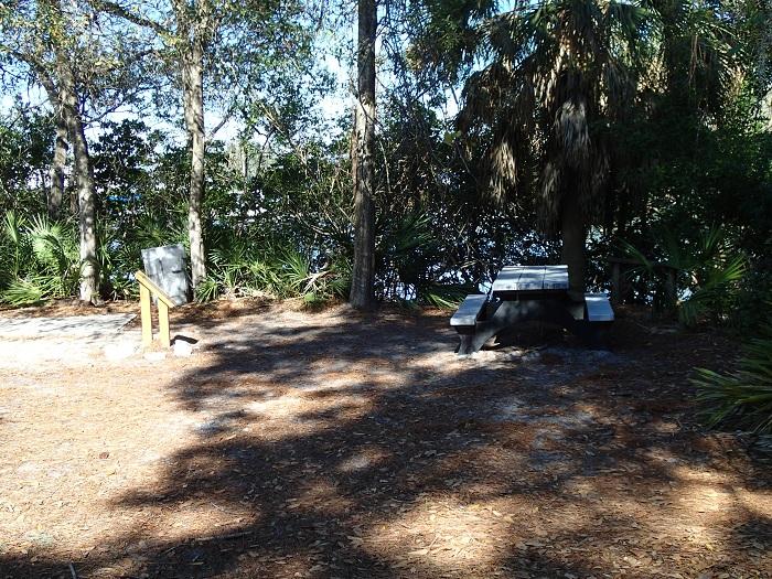 Maximo Park - Picnic Area