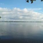 Philippe Park - View of Old Tampa Bay