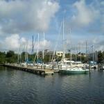 Safety Harbor - Marina