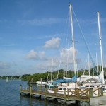 Safety Harbor Marina - Dock