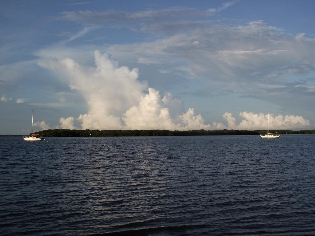 Maximo Park - Boats at anchor