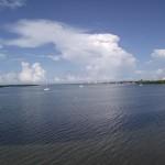 Maximo Park - Boat Basin