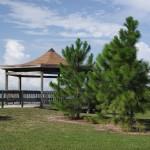 Maximo Park - Gazebo