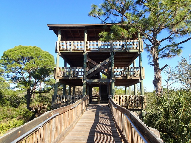 Wall Springs Park Observation Tower