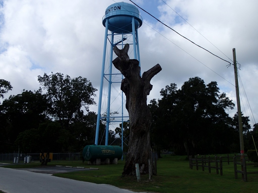 Nature Coast State Trail - Trenton Water Tower & Tree