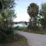 Cape Haze Pioneer Trail - Mercer Trailhead Pond