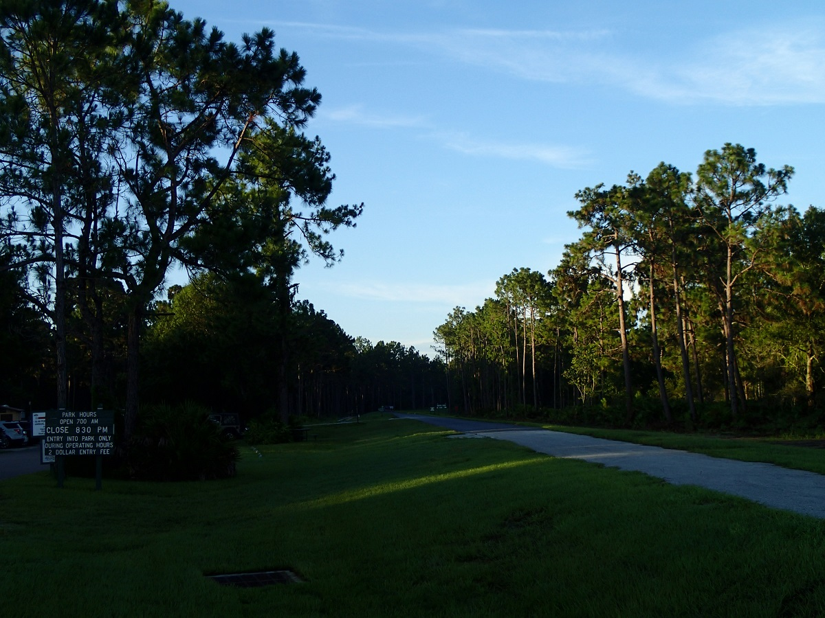 Flatwoods Park Trail – New Tampa – Hillsborough County, Florida