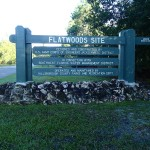Flatwoods Park Trail Morris Bridge Road Sign