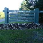 Flatwoods Park Trail Morris Bridge Road Sign