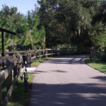 Fort Fraser Trail - General Trail Shot