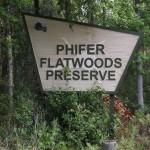 Phifer Flatwoods State Preserve