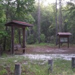 Phifer Flatwoods Trailhead