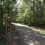 Mile Marker 13