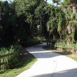 Venetian Waterway Park - General Trail Shot