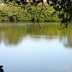North Bay Trail - Weedon Island Shady Lagoon Overlook