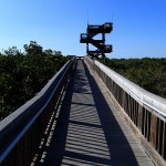 North Bay Trail - Weedon Island Tower Overlook