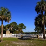 North Bay Trail - Weedon Island Settlement House