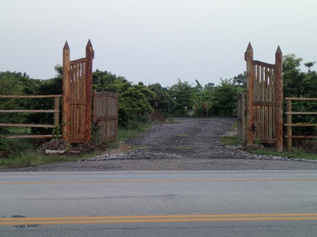 Gates to Tree Farm