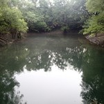 Suwannee River Greenway - Swimming Area