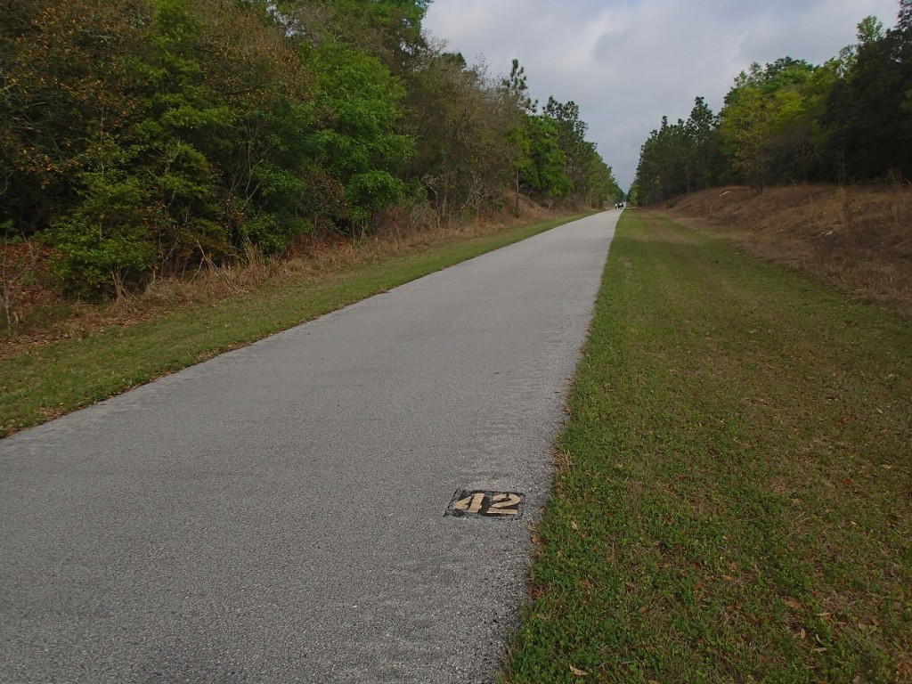 Withlacoochee State Trail - Mile Marker 42 Looking North