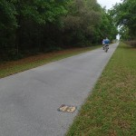 Withlacoochee State Trail - Mile Marker 43