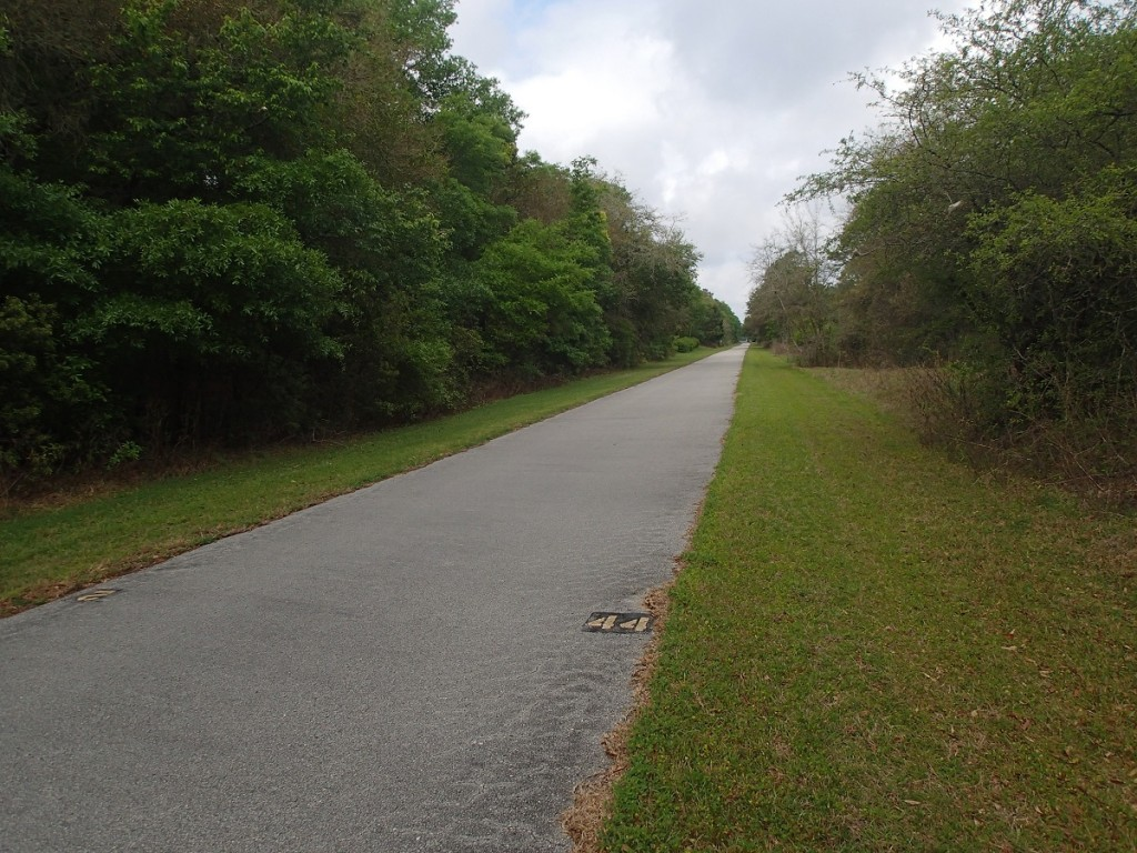 Withlacoochee State Trail - Mile Marker 44 Looking North