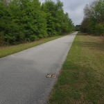 Withlacoochee State Trail - Mile Marker 45 Looking North