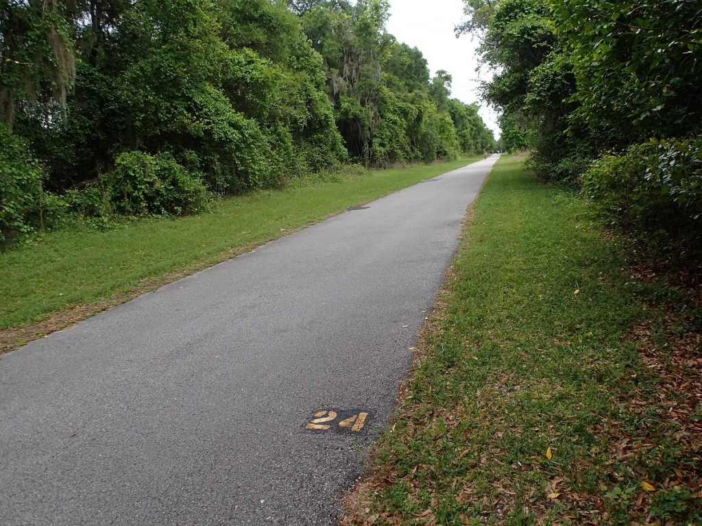 Withlacoochee State Trail - Mile Marker 24 Looking North