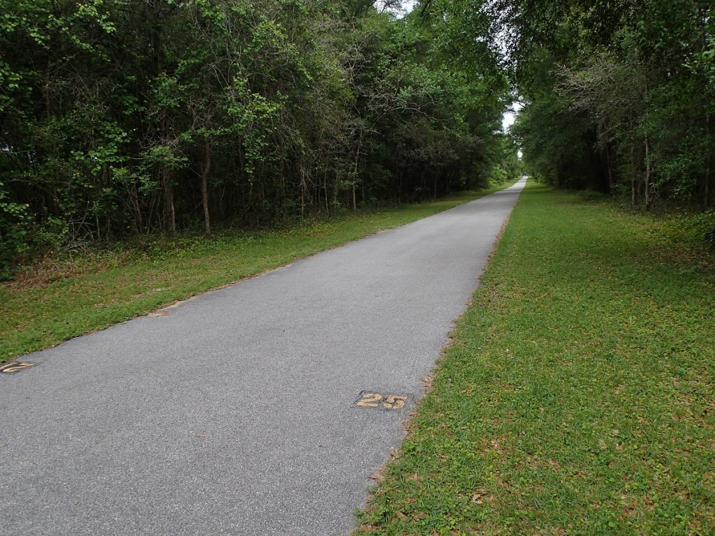 Withlacoochee State Trail - Mile Marker 25 Looking North
