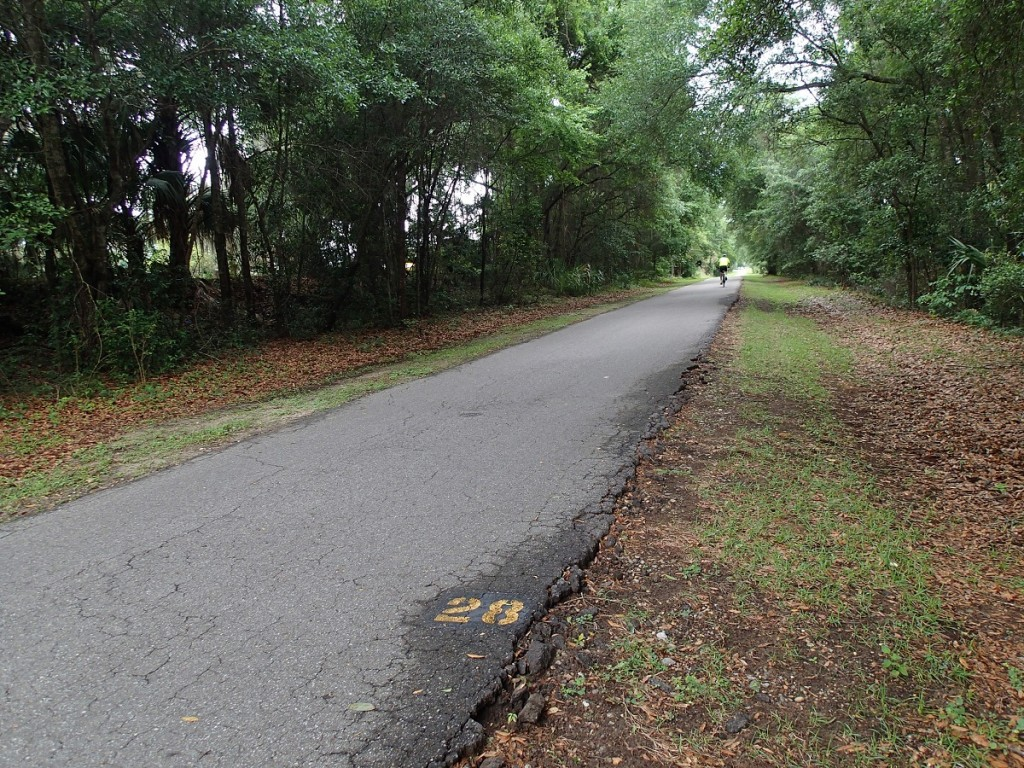 Withlacoochee State Trail - Mile Marker 28 Looking North