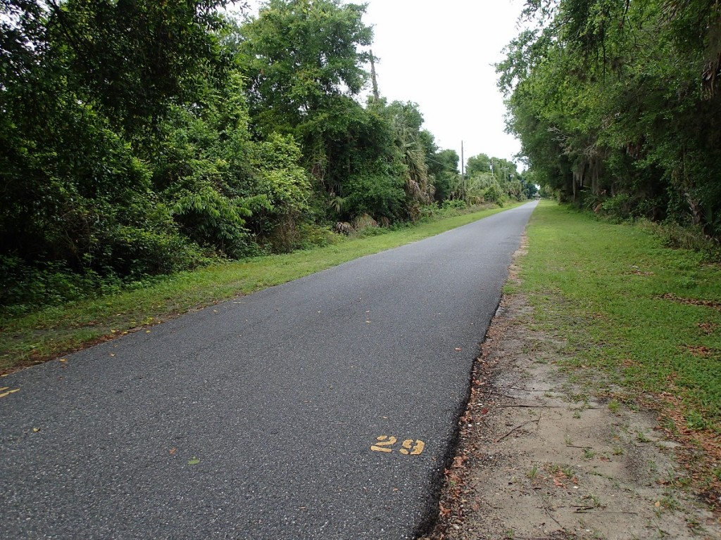 Withlacoochee State Trail - Mile Marker 29 Looking North