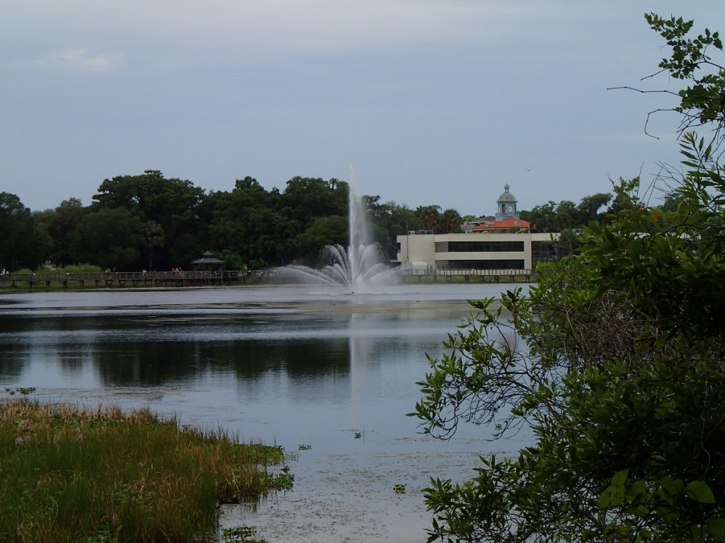 Withlacoochee State Trail - Water Fountain