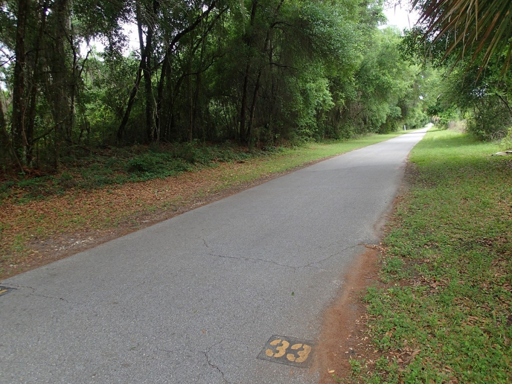 Withlacoochee State Trail - Mile Marker 33 Looking North