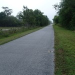 Withlacoochee State Trail - Mile Marker 27 Looking South