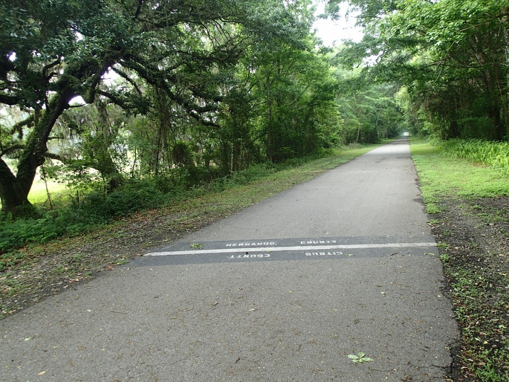 Withlacoochee State Trail - Citrus-Hernando County Line