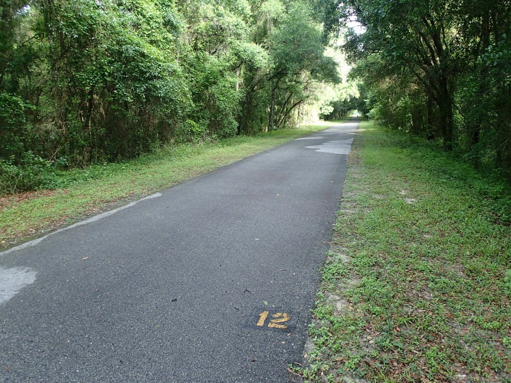 Withlacoochee State Trail - Mile Marker 12 Looking North