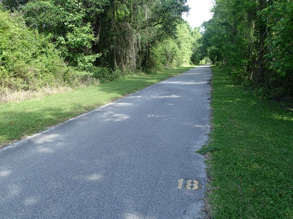 Withlacoochee State Trail - Mile Marker 18 Looking North