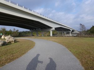 Withlacoochee Bay Trail - Underpass