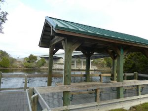 Withlacoochee Bay Trail - Trailside Shelter