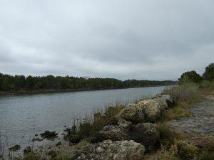 Withlacoochee Bay Trail - Shoreline
