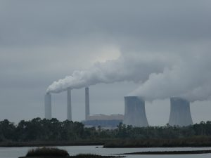 Withlacoochee Bay Trail - Duke Energy Crystal River Power Plant