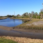 Skyway Trail Extension - Clam Bayou Low Tide