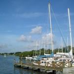 Safety Harbor Marina - Dock