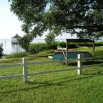 Bayshore Linear Greenway - Shot of Old Tampa Bay