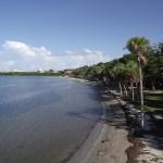 Maximo Park - Shoreline