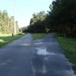 Nature Coast State Trail - Fork to Trenton