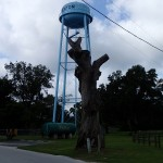 Nature Coast State Trail - Trenton Water Tower & Tree